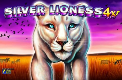 Silver Lioness