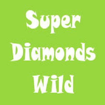Super Diamond Wild slot
