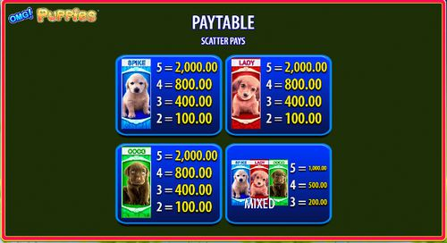 OMG! Puppies free play