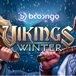Vikings Winter