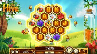 The Hive demo