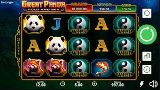 Great Panda Hold and Win demo