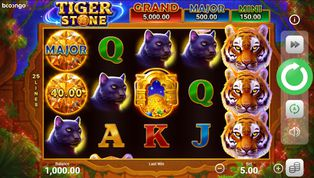 Tiger Stone: Hold and Win demo