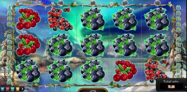 Winterberries demo