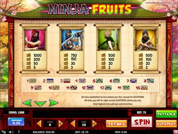 Ninja Fruits free play