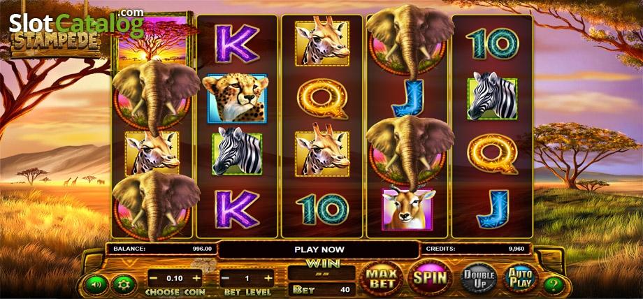 Starspins casino no deposit
