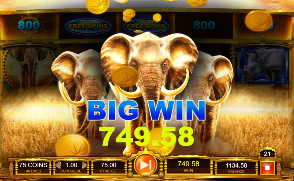Elephant King Big Win