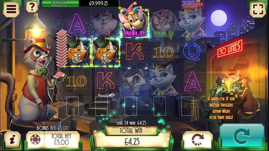 blackjack cats slot